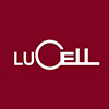 LuCell Safes