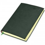 FIS Flexible Diary 2021 (English) A5, Green
