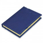 FIS Pocket Diary 2021 (English) Blue