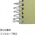Maruman SketchBook Olive Series F6