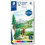 Staedtler 146C Coloured pencil permanent  Metal Box of 12 Color