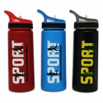 Water Bottle 700ML Steel