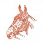 TOP-OG-RAPHY TOP FOIL HORSE HEAD