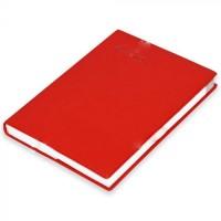 FIS Pocket Diary 2021 (English) Red