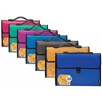 Foldermate Expanding file 13 Pocket A4 Box of 10pcs