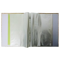 Display File Hard Cover A4 with 80 to 100 pockets