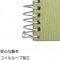Maruman SketchBook Olive Series F6