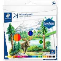 Staedtler 146C Coloured pencils permanent  Set of 24 Color