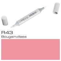 R43 BOUGAINVILLAEA  SKETCH MARKER