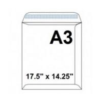 AMS00321