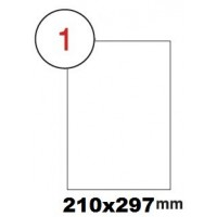 Formtec Label 100/210 x 297mm A4 #1 Box of 100sheets