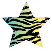FABRIC IRON ON - NEON ZEBRA STAR