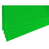 SADIPAL Sirio Card Board Colour Sheets-50x65cm-170 GMS-Dark Green 25SHT/PK