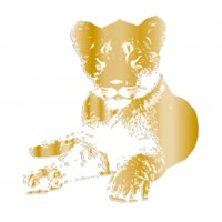 TFD-FOIL TRANSFER LION CUB